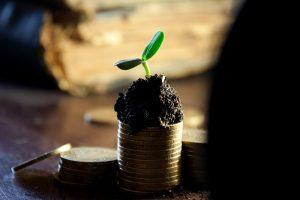 Predaj sro neplatca DPH od spoľahlivej firmy